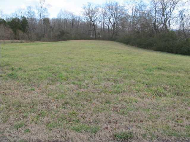 155 Mountain Meadow Ln, Kimball, TN 37347 (MLS #1241472) :: The Robinson Team