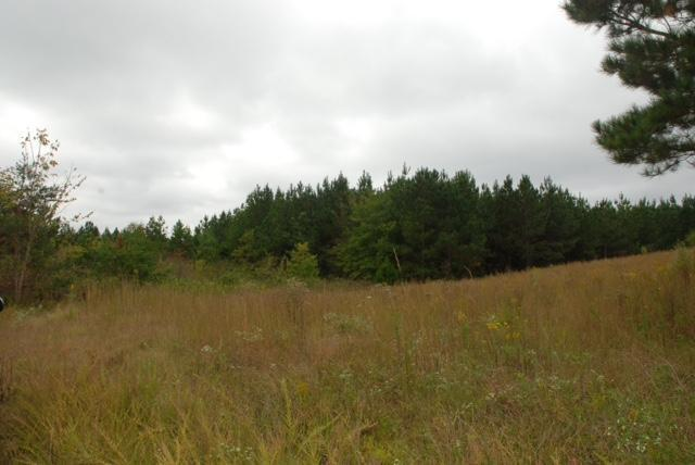 Lot 34 Spring Place Rd, Cleveland, TN 37323 (MLS #1241871) :: Chattanooga Property Shop