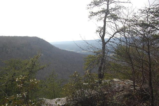 6 Tatum Overlook - Photo 1