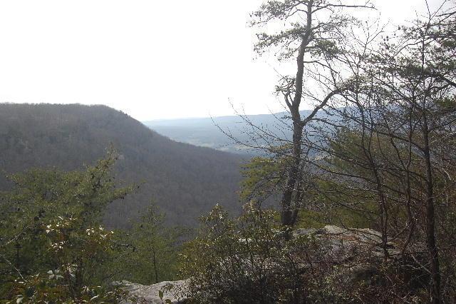 6 Tatum Overlook, Cloudland, GA 30731 (MLS #1242365) :: The Edrington Team