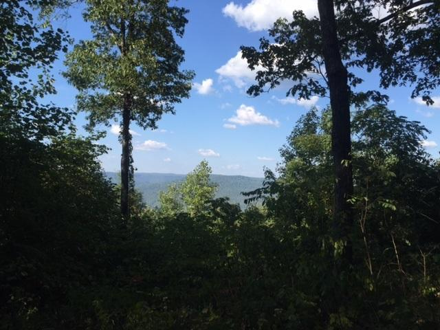 26 Jackson Point Road #26, Sewanee, TN 37375 (MLS #1253344) :: Chattanooga Property Shop