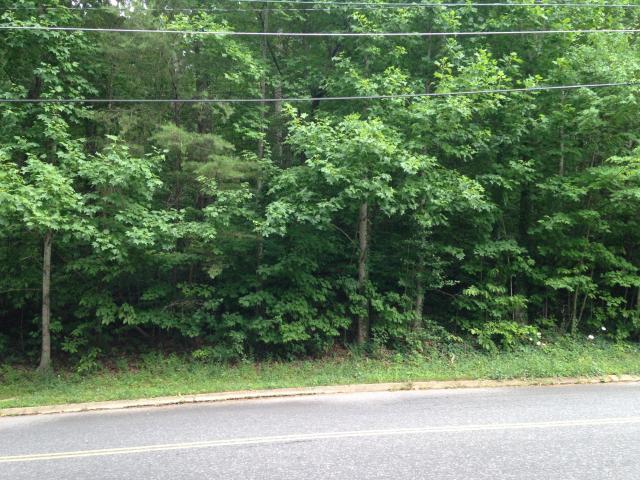 45 Cool Springs Rd, Signal Mountain, TN 37377 (MLS #1260273) :: The Robinson Team