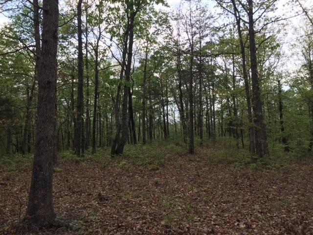 48 Jackson Point Road #48, Sewanee, TN 37375 (MLS #1262819) :: Chattanooga Property Shop