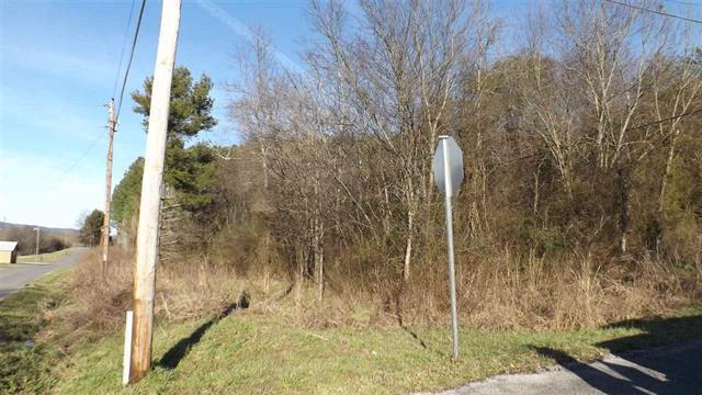 Lot 23&24 Hinch St Lot #23 & 24, Spring City, TN 37381 (MLS #1263955) :: The Robinson Team