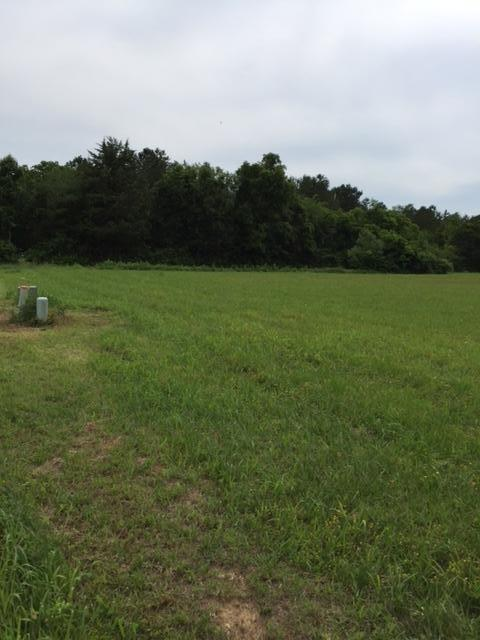 Lot # 1 Rockholt Ln, Georgetown, TN 37336 (MLS #1264941) :: Chattanooga Property Shop