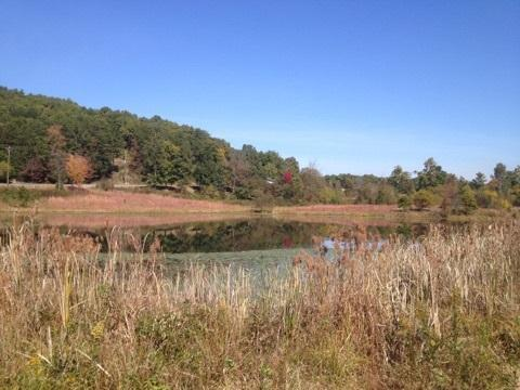 Lot 5 NW Frontage Rd #5, Cleveland, TN 37312 (MLS #1266713) :: The Robinson Team
