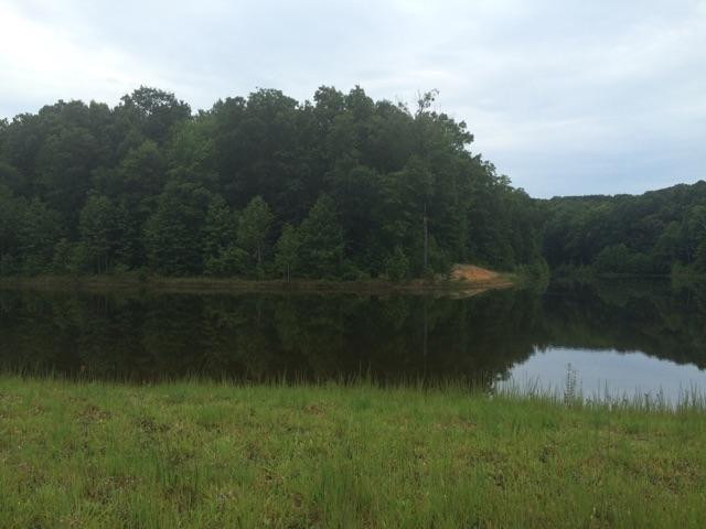 19 Sunbeam Lake Loop, Dunlap, TN 37327 (MLS #1269427) :: Chattanooga Property Shop