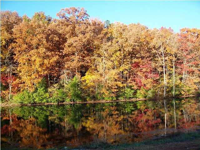 276 White Oak Tr, Sequatchie, TN 37374 (MLS #1269470) :: Chattanooga Property Shop