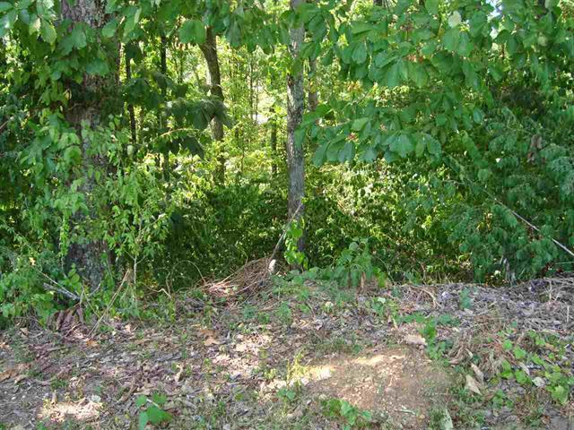 Lot 26 Mountain View Dr, Chattanooga, TN 37406 (MLS #1270206) :: The Mark Hite Team