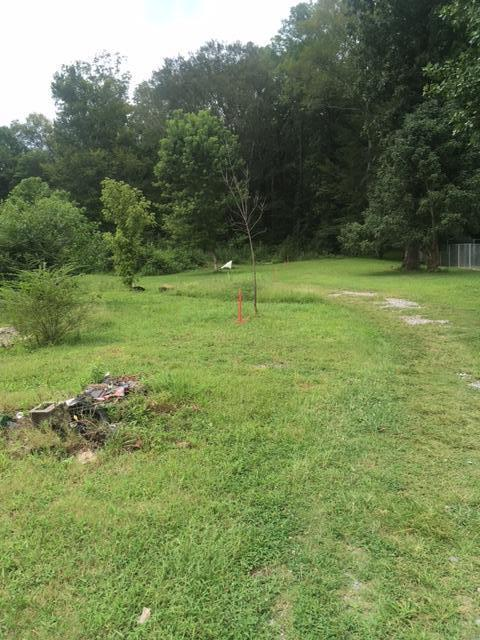 2001 Cline Rd, Whitwell, TN 37397 (MLS #1271421) :: Chattanooga Property Shop