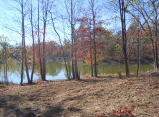 339 Bluff View Dr, Dunlap, TN 37327 (MLS #1272659) :: Chattanooga Property Shop