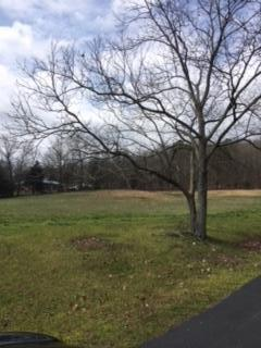 0 SE Blue Springs Rd, Cleveland, TN 37311 (MLS #1272987) :: Chattanooga Property Shop
