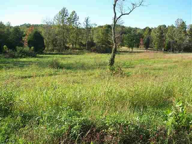 1384 Dry Fork Valley Rd, Ten Mile, TN 37880 (MLS #1274524) :: Chattanooga Property Shop
