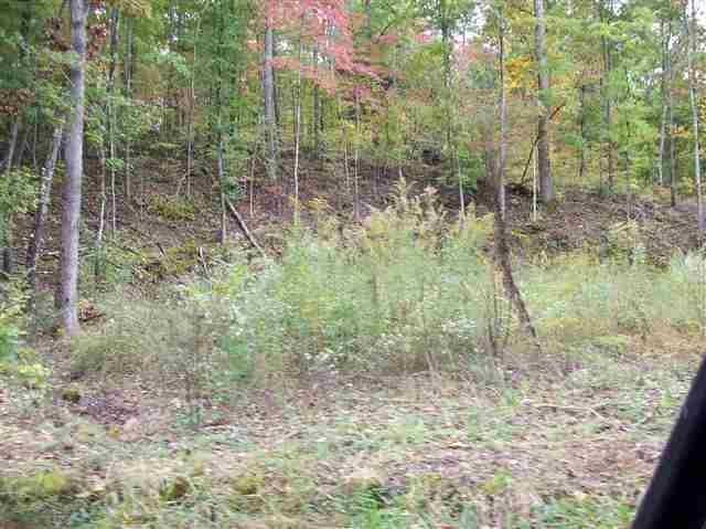 269 Woody Hill Rd, Kingston, TN 37763 (MLS #1274656) :: Chattanooga Property Shop