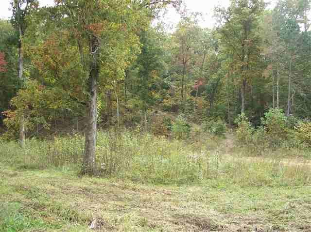 451 Mans Hollow Rd, Kingston, TN 37763 (MLS #1274657) :: Chattanooga Property Shop