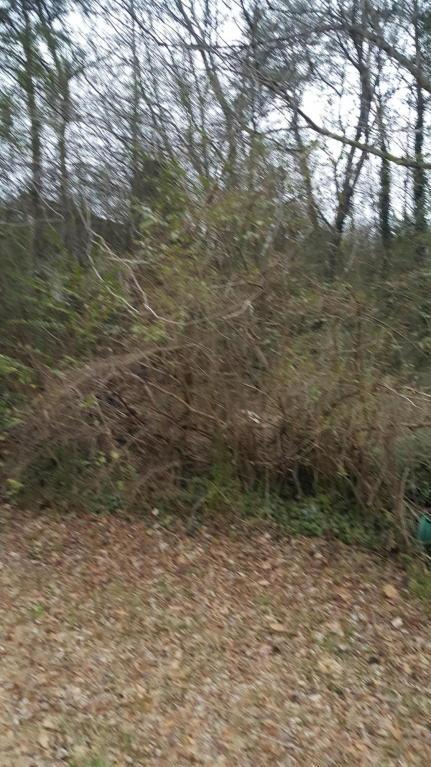 2327 Lyons Ln Lot #19, Soddy Daisy, TN 37379 (MLS #1276007) :: Keller Williams Realty | Barry and Diane Evans - The Evans Group
