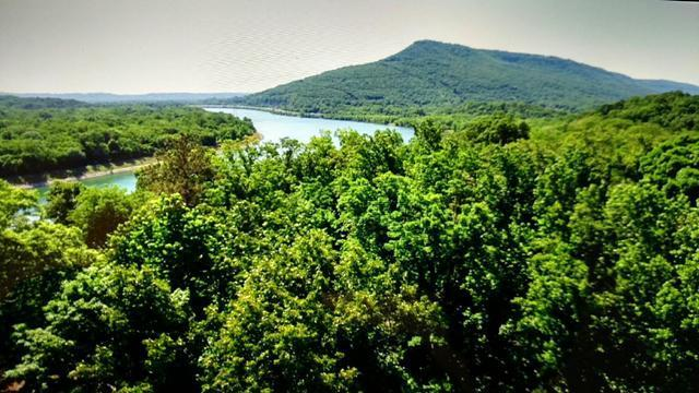 3037 Waterfront Ct, Chattanooga, TN 37419 (MLS #1276047) :: Chattanooga Property Shop