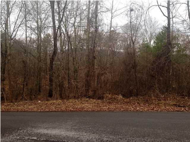 0 Wildwood Dr, Wildwood, GA 30757 (MLS #1276487) :: Chattanooga Property Shop