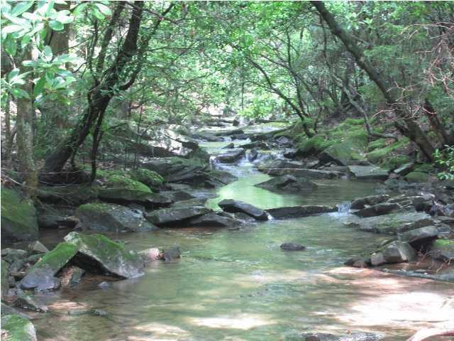 24 Clear Creek Dr, Signal Mountain, TN 37377 (MLS #1276639) :: Chattanooga Property Shop