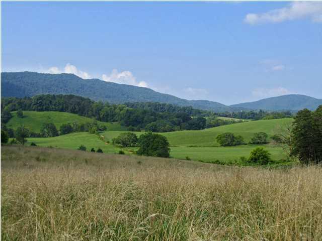 254 County Line Rd, Dandridge, TN 37725 (MLS #1278165) :: Keller Williams Realty | Barry and Diane Evans - The Evans Group