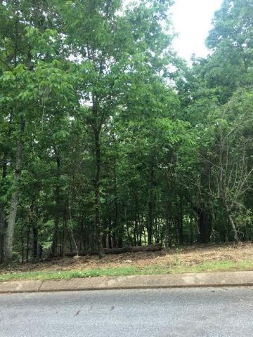 7303 River Run Dr, Chattanooga, TN 37416 (MLS #1279610) :: Chattanooga Property Shop