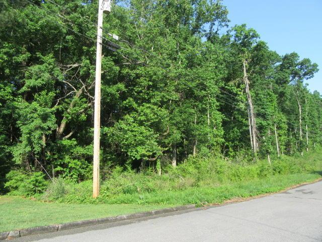 0 Hickory Ridge Tr 219 & 220, Ringgold, GA 30736 (MLS #1281327) :: The Mark Hite Team