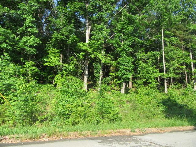 0 Hickory Ridge Tr #223, Ringgold, GA 30736 (MLS #1281350) :: Chattanooga Property Shop