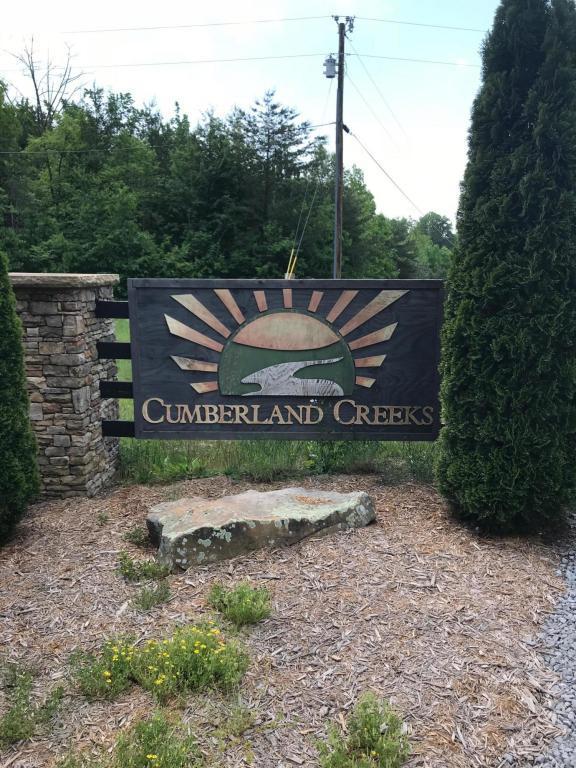 1005 Soak Creek Ln, Grandview, TN 37337 (MLS #1281810) :: The Robinson Team