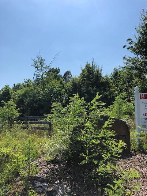 3 John Henry Lewis Rd, Dunlap, TN 37327 (MLS #1283330) :: Chattanooga Property Shop