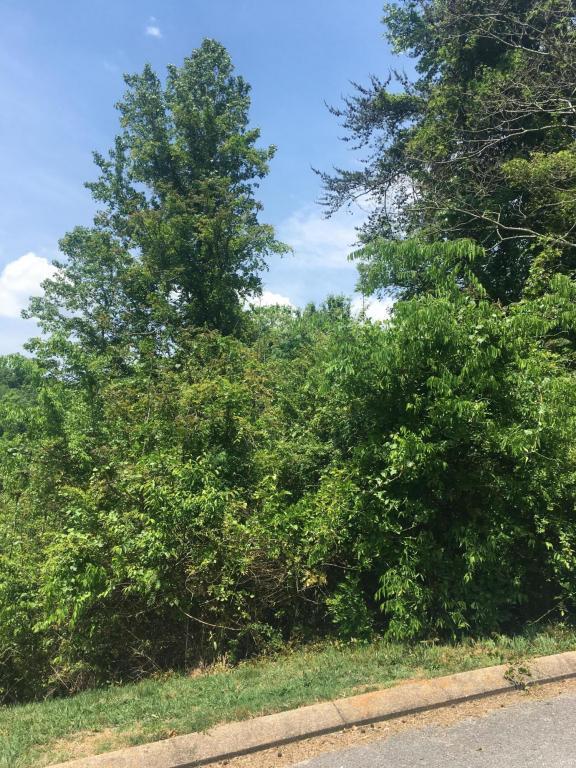 322 Knoll Creek Cir, Chattanooga, TN 37415 (MLS #1283626) :: The Robinson Team