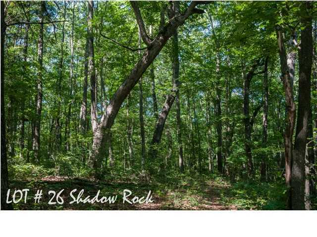 26 Shadow Rock Dr, Monteagle, TN 37356 (MLS #1285967) :: Keller Williams Realty | Barry and Diane Evans - The Evans Group