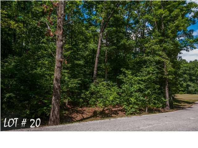 20 Shadow Rock Dr, Monteagle, TN 37356 (MLS #1285972) :: Keller Williams Realty | Barry and Diane Evans - The Evans Group