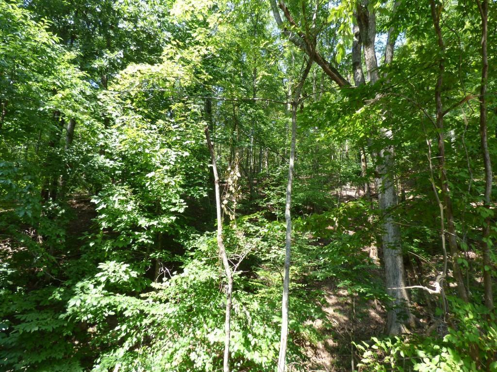 Lot 533 Rockview Dr - Photo 1