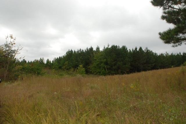 Lot 34 Spring Place Rd, Cleveland, TN 37323 (MLS #1287616) :: The Robinson Team