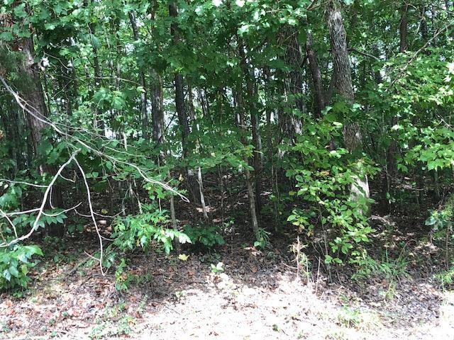 111 Hidden Hollow Cir, Dunlap, TN 37327 (MLS #1287976) :: Chattanooga Property Shop