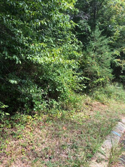 119 Hidden Hollow Cir, Dunlap, TN 37327 (MLS #1288006) :: Chattanooga Property Shop