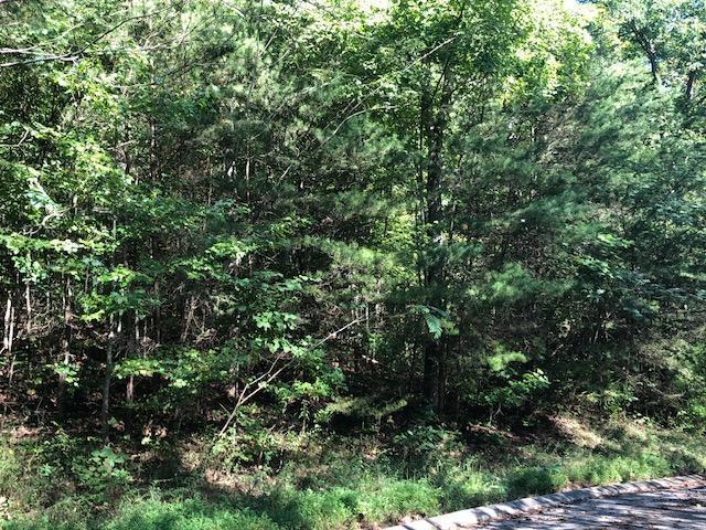 84 Rinks Dr, Dunlap, TN 37327 (MLS #1288215) :: Chattanooga Property Shop