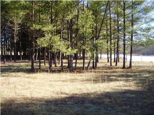 # 3 Palmer Lake Rd, Graysville, TN 37338 (MLS #1291522) :: Grace Frank Group