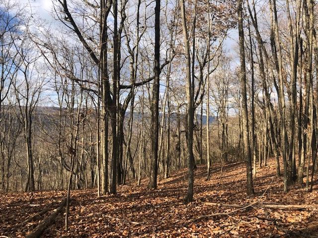 0 Bolton Point Rd #5, South Pittsburg, TN 37380 (MLS #1292029) :: Denise Murphy with Keller Williams Realty