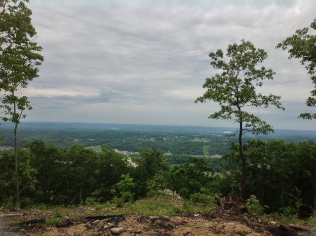 1023 Escape Dr #10, Evensville, TN 37332 (MLS #1292474) :: Chattanooga Property Shop