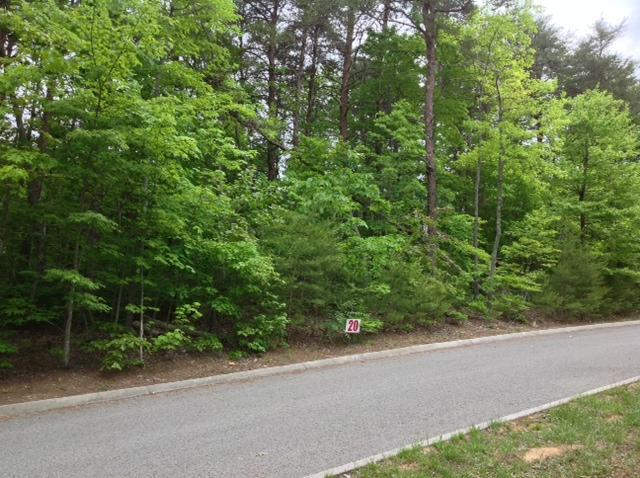 20 Duckwood Ln #20, Evensville, TN 37332 (MLS #1292486) :: The Mark Hite Team