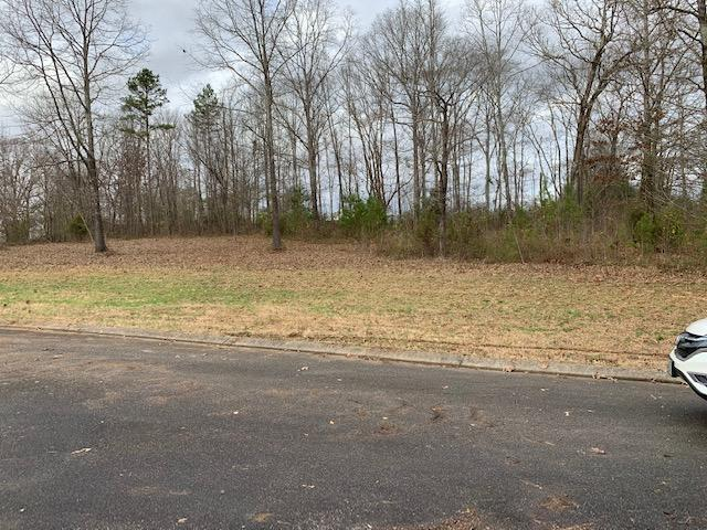 0 Village Dr Lot #34, Chickamauga, GA 30707 (MLS #1292491) :: The Weathers Team