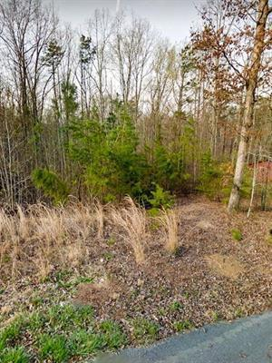 Lot 53 Holly Glen Ln Lot 53, Decatur, TN 37322 (MLS #1293750) :: Keller Williams Realty | Barry and Diane Evans - The Evans Group