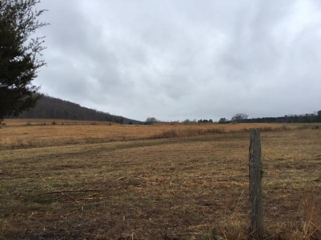 Lot # 1 NW Francisco Rd Nw Off Rd #1, Georgetown, TN 37336 (MLS #1294725) :: The Jooma Team