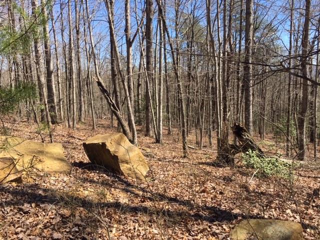 0 Wilderness Way #545, Dunlap, TN 37327 (MLS #1296383) :: The Robinson Team