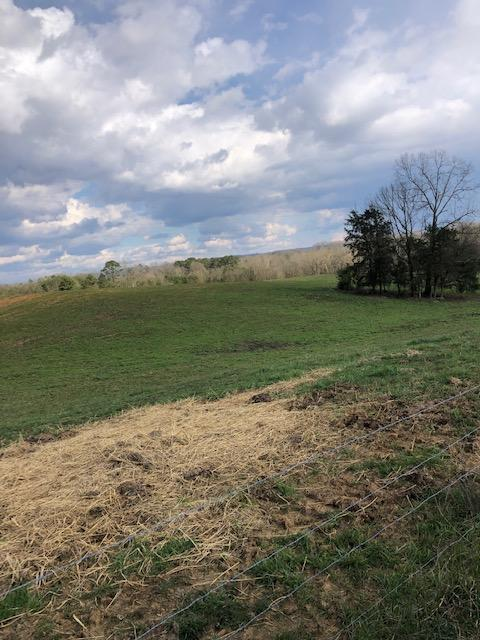 148 County Road 603, Athens, TN 37303 (MLS #1297235) :: The Edrington Team