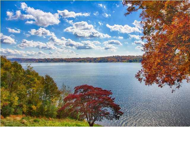 4316 Lakeshore Ln Unit 302, Chattanooga, TN 37415 (MLS #1297412) :: Keller Williams Realty | Barry and Diane Evans - The Evans Group