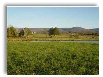 5 Spring Lake Dr #5, Dunlap, TN 37327 (MLS #1297689) :: The Robinson Team
