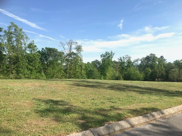 Lot 3 NE Greenbriar Trail, Cleveland, TN 37323 (MLS #1298634) :: Austin Sizemore Team