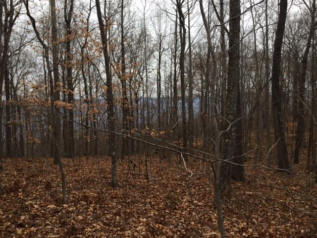 Lot 25 Jackson Point Lot 25, Sewanee, TN 37375 (MLS #1299626) :: Keller Williams Realty | Barry and Diane Evans - The Evans Group